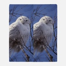Snowy White Owl, Blue Sky Throw Blanket