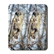 Great Gray Owl in a Tree Mousepad