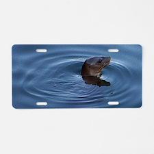 Lone Sea Lion Aluminum License Plate