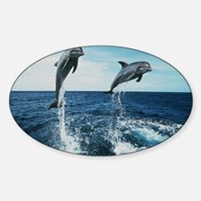 Twin Dolphins Decal