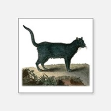 "Chartreux Cat Square Sticker 3"" x 3"""