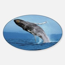 Humpback Whale Leap Decal