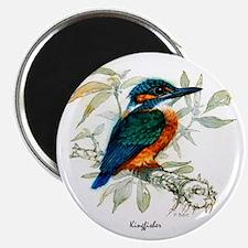 Kingfisher Peter Bere Design Magnet