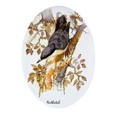 Nuthatch Peter Bere Design Oval Ornament