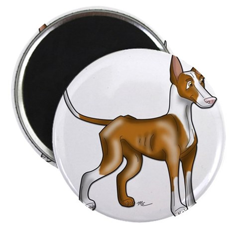 Ibizan Hound Illustration Magnet