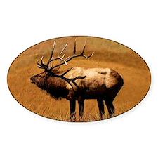 Big Wild Elk Decal