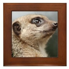 Meerkat Panel Print Framed Tile