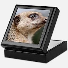Meerkat Panel Print Keepsake Box