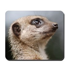 Meerkat Panel Print Mousepad