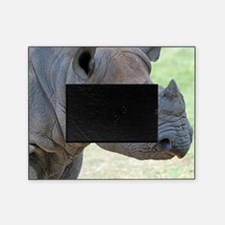 Black Rhino Panel Print Picture Frame