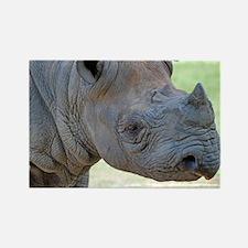 Black Rhino Panel Print Rectangle Magnet