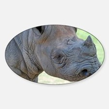 Black Rhino Panel Print Decal