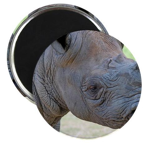 Black Rhino Panel Print Magnet