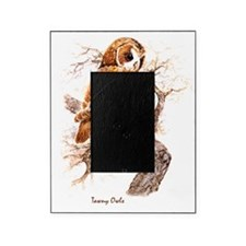 """Birds and Young """"Tawny Owls"""" Peter B Picture Frame"""