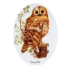 "OWLS ""Tawny Owl""  Peter Bere Design Oval Ornament"