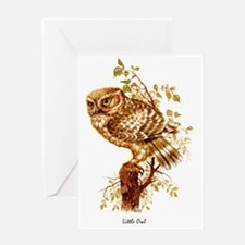 "OWLS ""Little Owl"" Peter Bere Design Greeting Card"