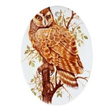 "OWLS ""Short Eared Owl""  Peter Bere D Oval Ornament"