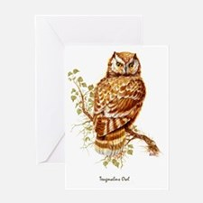 "OWLS ""Tengmalms Owl"" Peter Bere Desi Greeting Card"