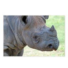 Black Rhino Pillow Case Postcards (Package of 8)
