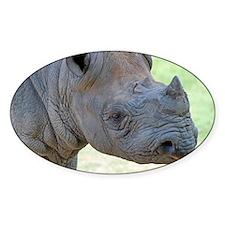Black Rhino Pillow Case Decal