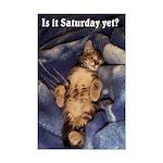 Tabby Kitten Mini Poster Print