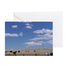 Fields of Grazing Greeting Card