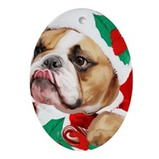 bulldog christmas card Oval Ornament