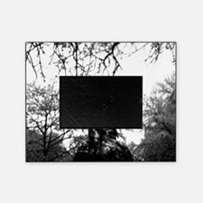 Forest of Antipathy - Wolf-girl in t Picture Frame