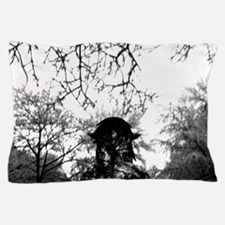 Forest of Antipathy - Wolf-girl in the Pillow Case