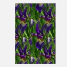Blue Irises Postcards (Package of 8)