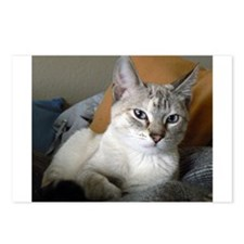Funny Siamese Postcards (Package of 8)