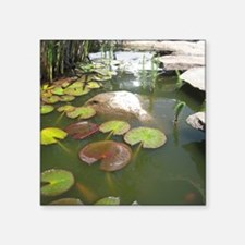 """LILY PADS IN KOI POND Square Sticker 3"""" x 3"""""""