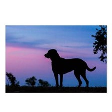 chessie profile Postcards (Package of 8)