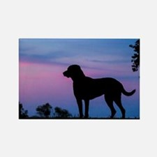 chessie profile Rectangle Magnet