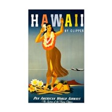 Vintage Hawaiian Travel Decal
