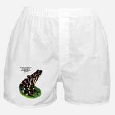 Costa Rican Variable Harlequin Toad Boxer Shorts