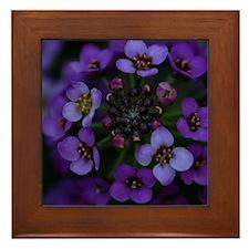 Purple Flowers Framed Tile