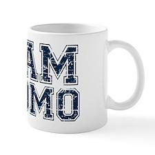 Team Cuomo 2016 Mug