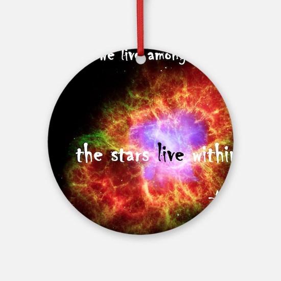 Neil deGrasse Tyson's Stardust Round Ornament
