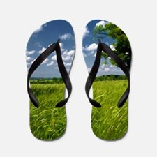 Scenic Green Grasslands and Blue Sky co Flip Flops