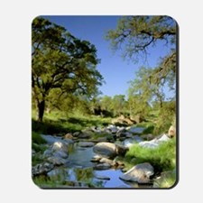 Countryside Creek and Trees Mousepad
