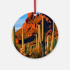 Arizona Desert Saguaro Cactus and M Round Ornament