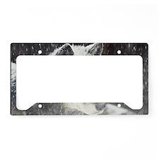 """Black  Timber  Wolf"" License Plate Holder"