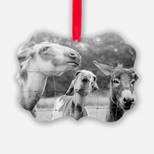Love Me Some Donkeys Ornament