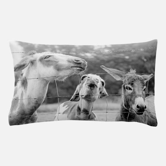 Love Me Some Donkeys Pillow Case