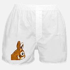 Bunny Head Boxer Shorts