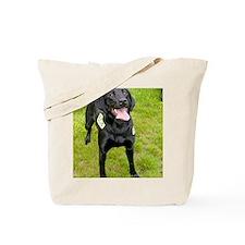k9 Lexi Tote Bag