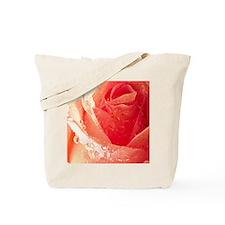 Raindrops On A Peach Tea Rose Tote Bag