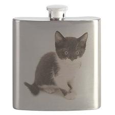 Cute Tuxedo Kitten Flask