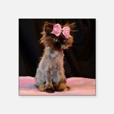 "Freida wearing her pink bow Square Sticker 3"" x 3"""